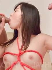 Sayaka Takahashi Asian in strings licks tools and is well fucked