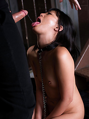 Small-boobed japanese slut swallows cock
