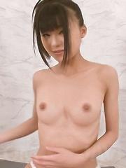 Chika Ishihara Asian with nasty boobs sucks one erect phallus